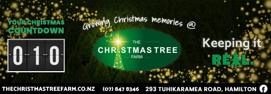 The Christmas Tree Farm Pukete Creative