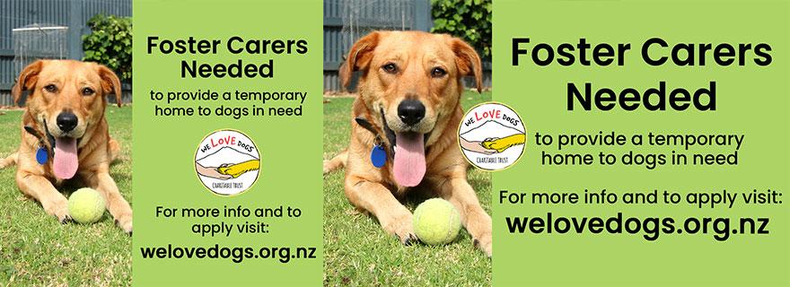 We Love Dogs Charitable Trust Liardet Creative